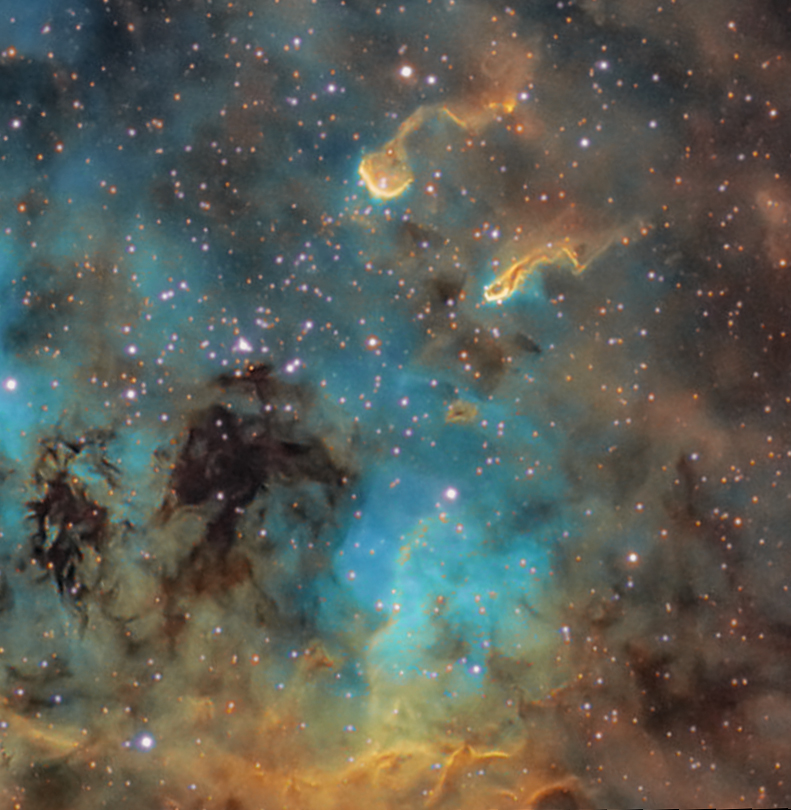 IC 410 and the tadpoles