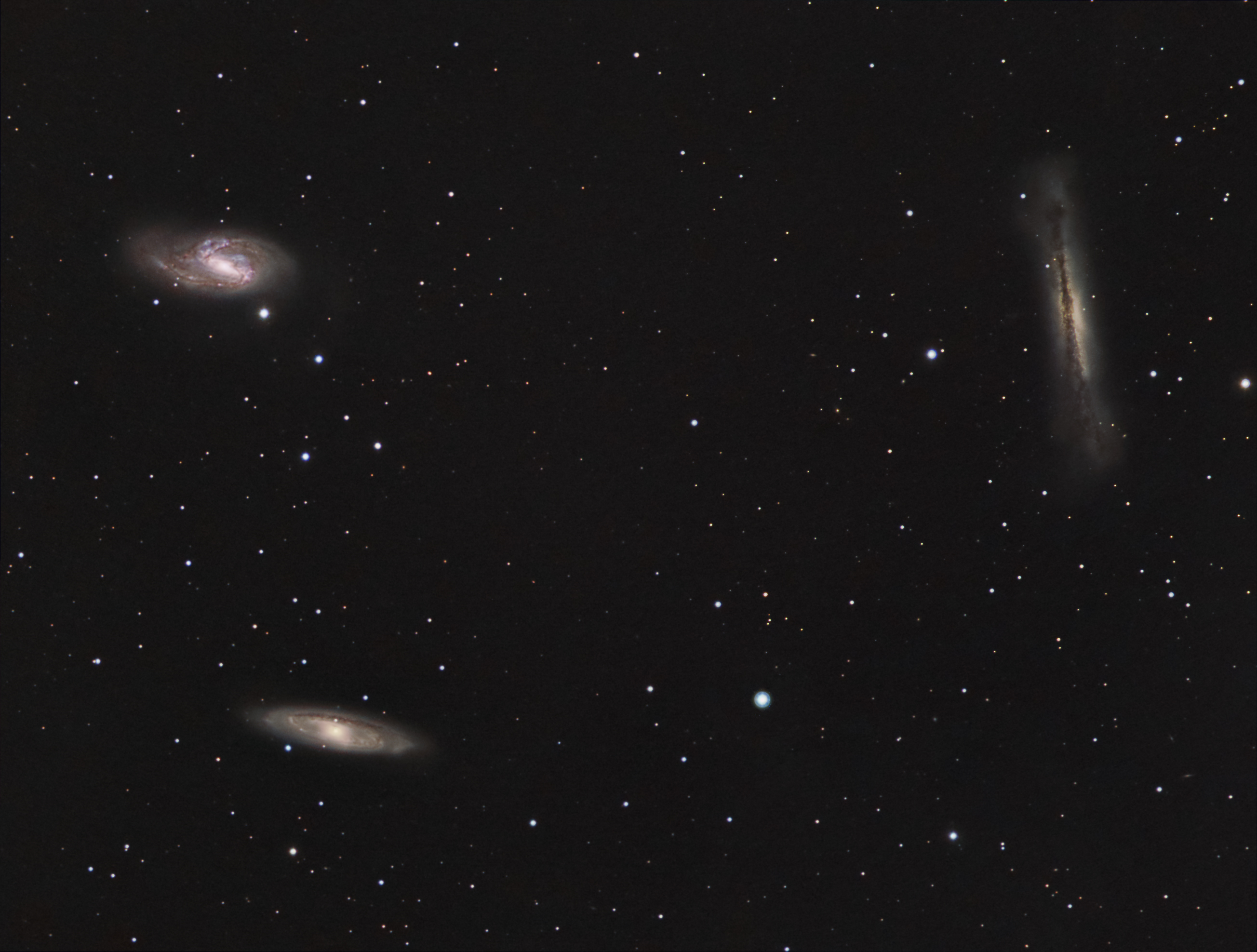 Leo triplet NGC3628, M66 and M65