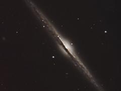 NGC 4565